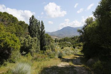 Extensive and ecological livestock exploitation in Sierra de Grazalema Natural Park