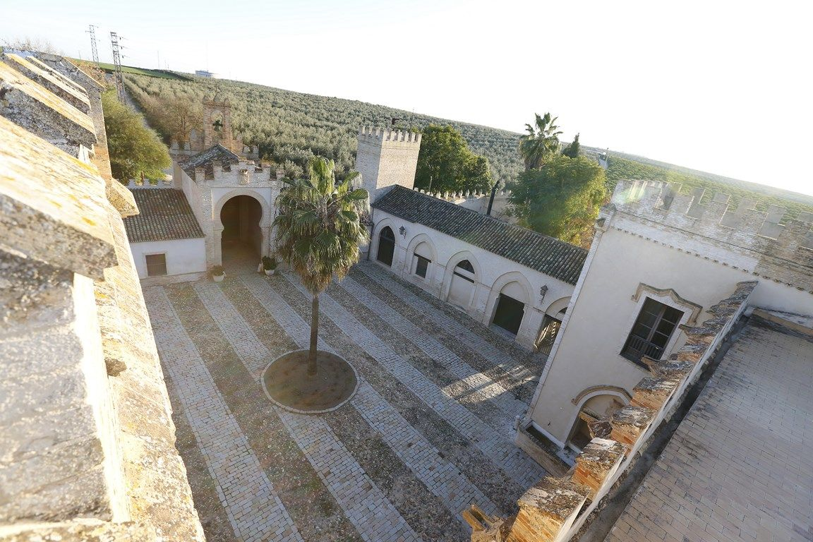 Luxury_property_hacienda_Seville_Andalusia_Spain 10