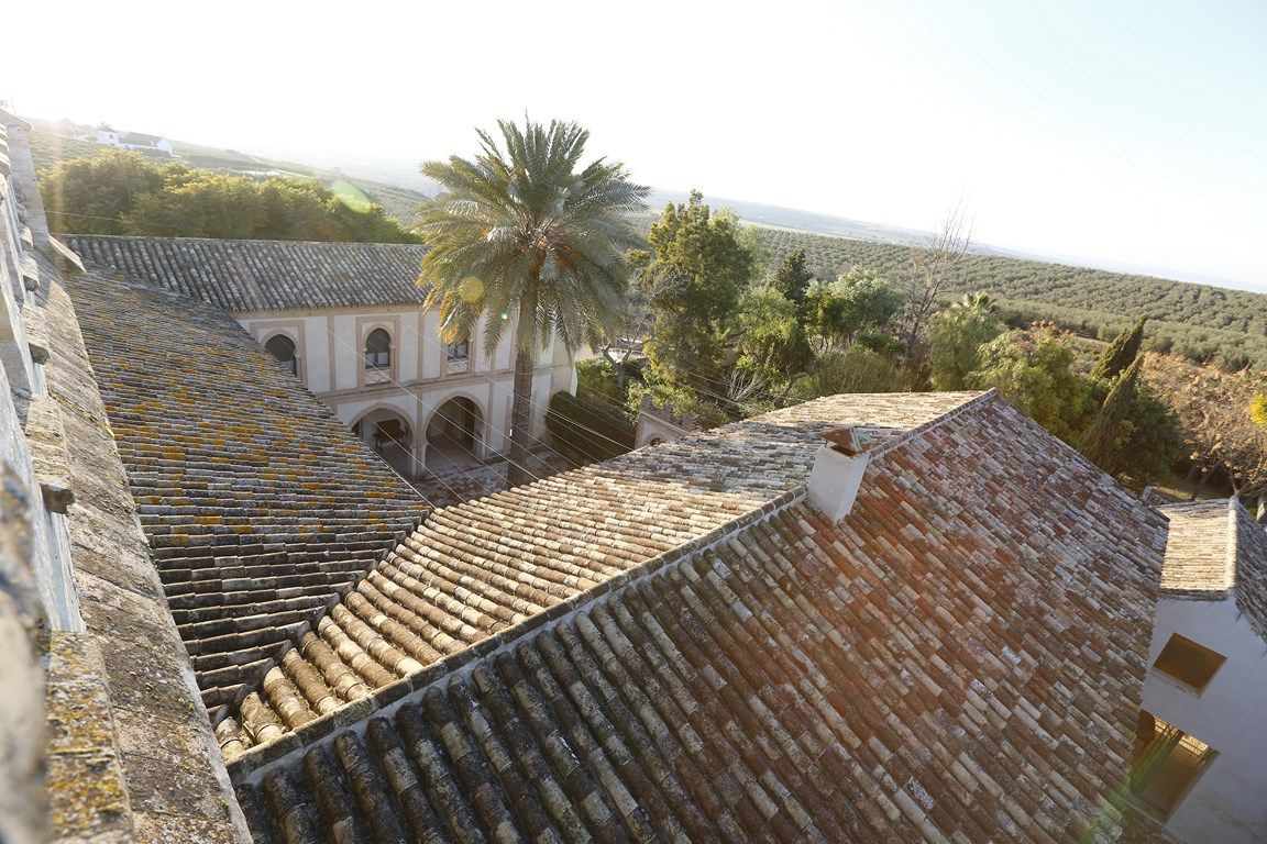 Luxury_property_hacienda_Seville_Andalusia_Spain 11