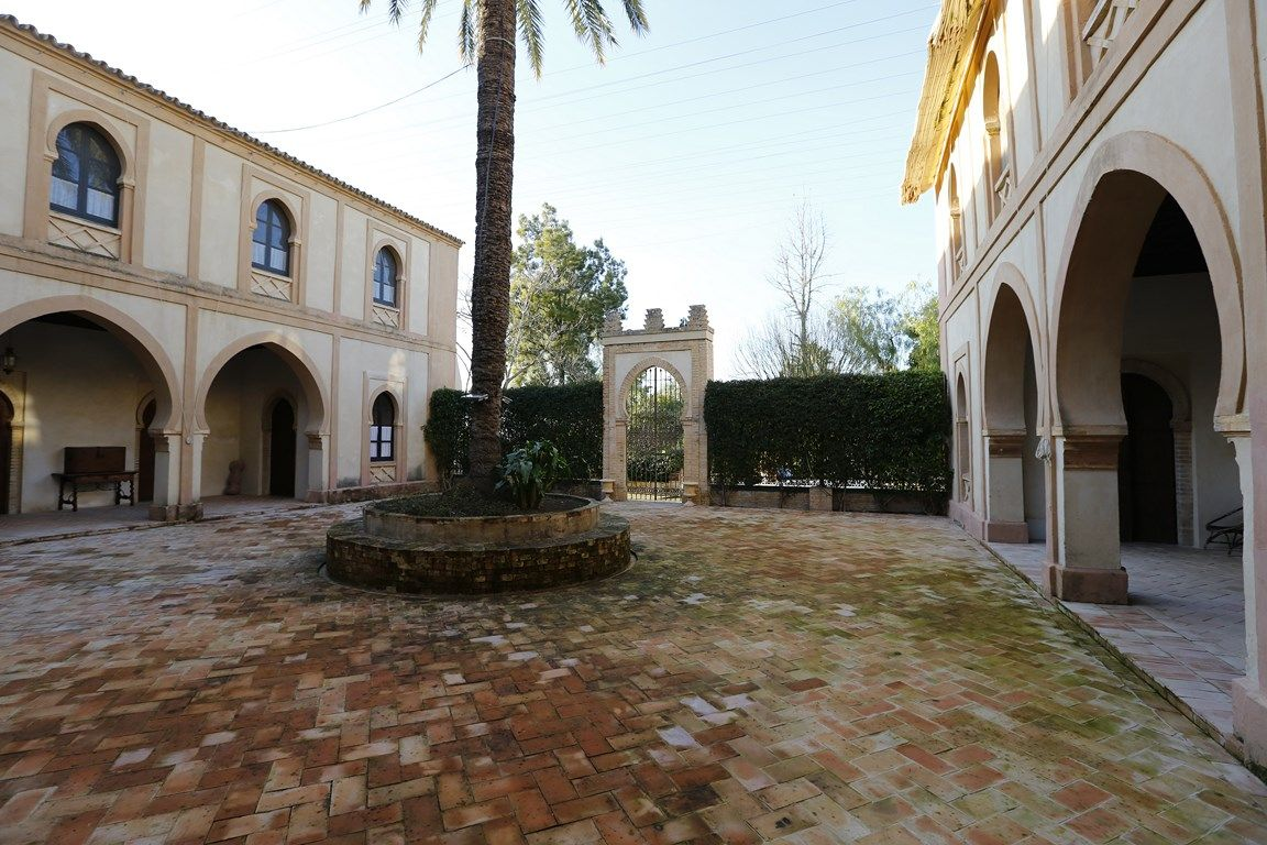 Luxury_property_hacienda_Seville_Andalusia_Spain 12