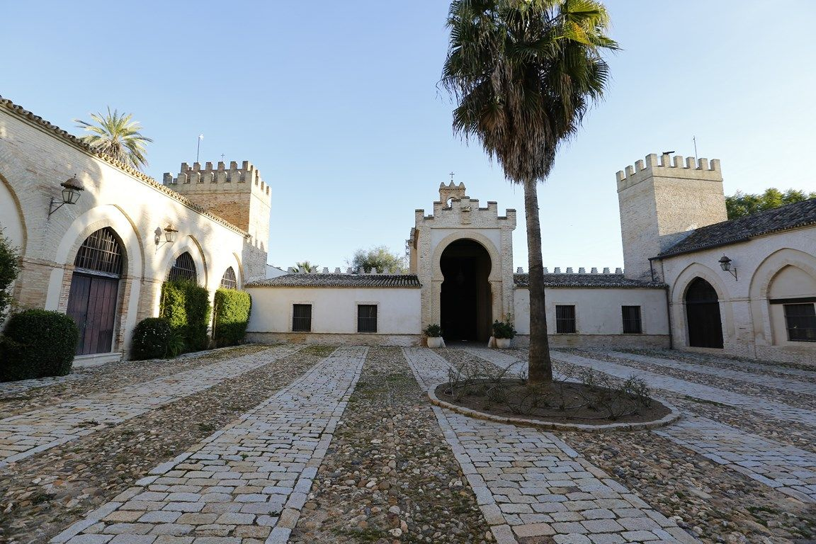 Luxury_property_hacienda_Seville_Andalusia_Spain 3